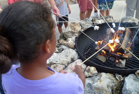 Roasting Marshmallows While Camping