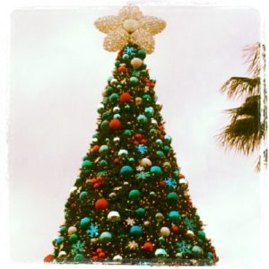 SeaWorld's Christmas Celebration at SeaWorld Orlando