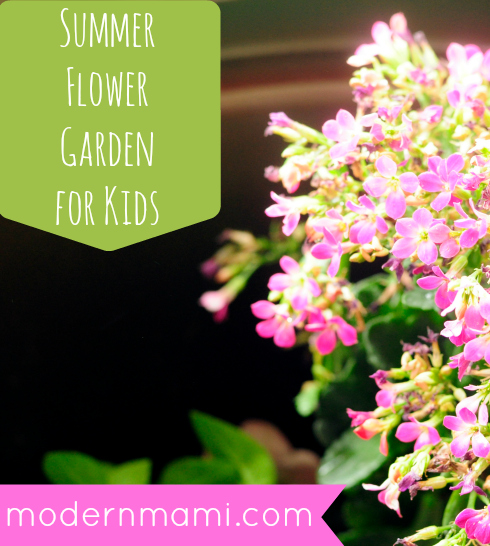 Summer Flower Garden for Kids